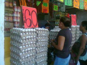 huevos-avicultura-mexicana