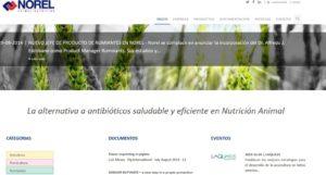 norel-pagina-web