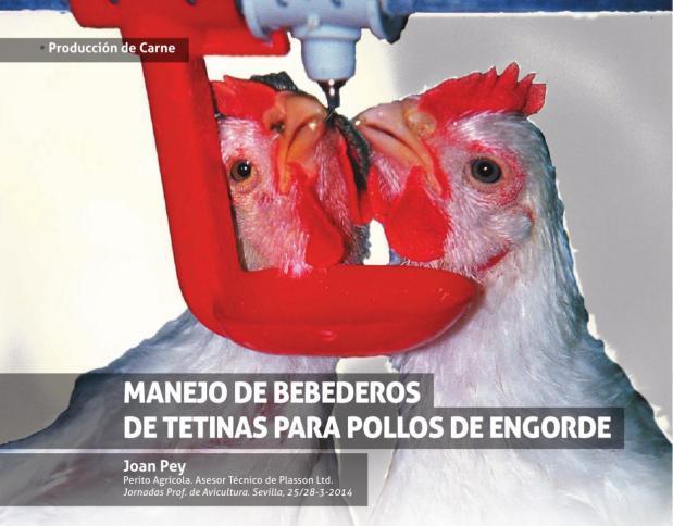 Manejo de bebederos de teina en pollos de engorde