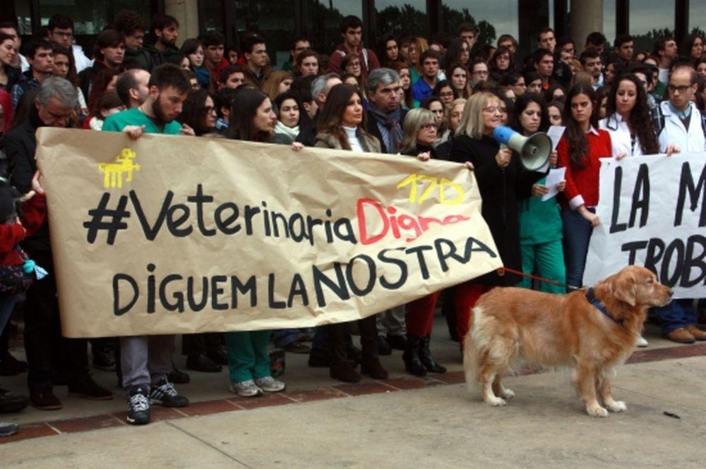 veterinaria-facultad-barcelona