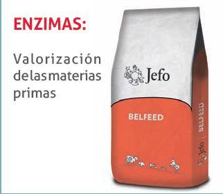 enzimas-jefo