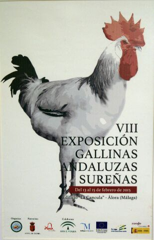 gallinas-andaluzas-surenas