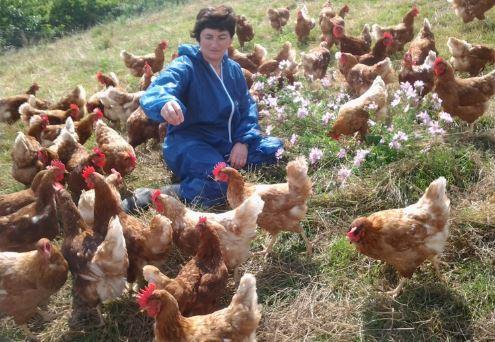 huevos-navarros-larraz