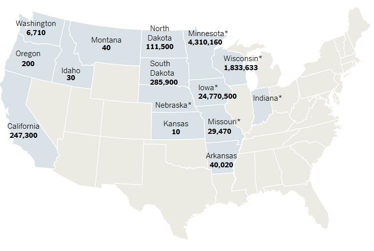 Nº aves sacrificadas en cada estado. Fuente: New York Times