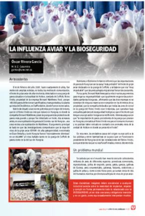 influenza-aviar-bioseguridad