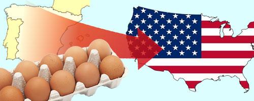 20151211-España-potencia-exportadora-de-huevos
