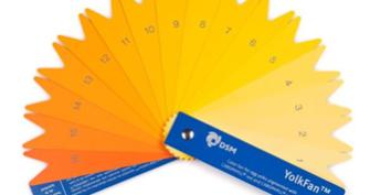 DSM incorpora un nuevo color a su abanico de pigmentación