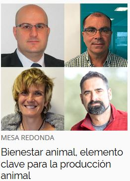msd-congreso-virtual-bienestar-animal