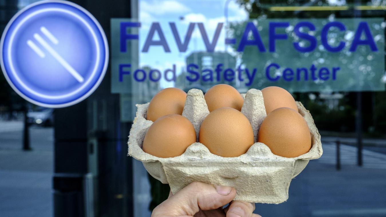afsca-huevos-fipronil-belgica-2