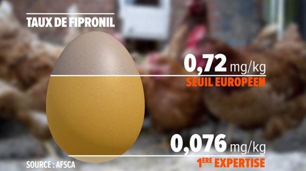 afsca-huevos-fipronil-belgica-dosis-no-toxica