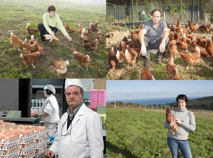 productores-vascos-de-huevos