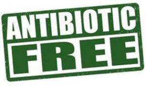 Antibiotic-free-cargill-feed-poultry-
