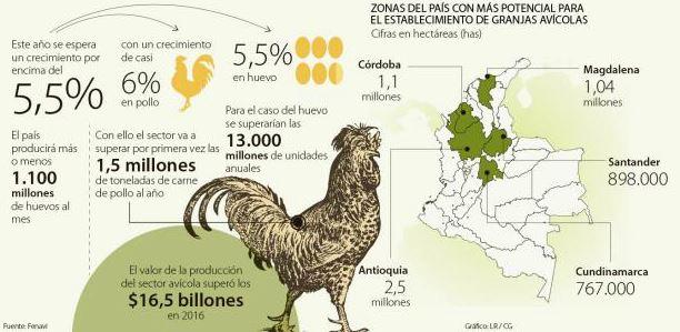 Proyecciones del sector avícola en Colombia.