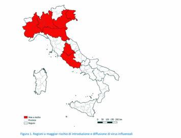 Regiones más predispuestas en Italia para sufrir la gripe aviar.