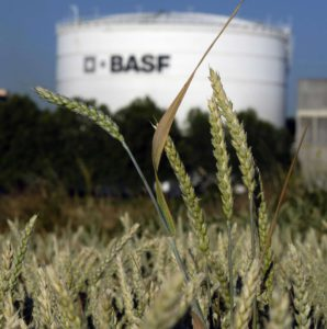 basf-planta-quimica-incendio-piensos