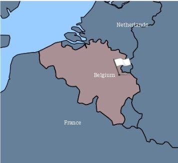 enfermedad-de-newcastle-en-belgica-1
