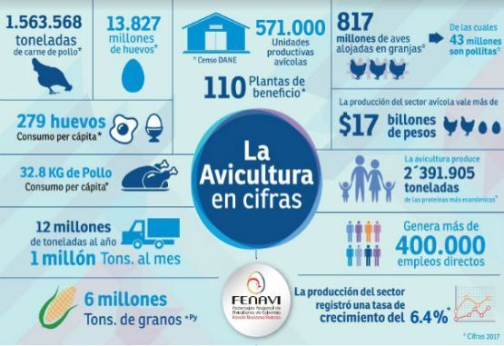 La avicultura colombiana en cifras, fuente: FENAVI. Datos 2017.