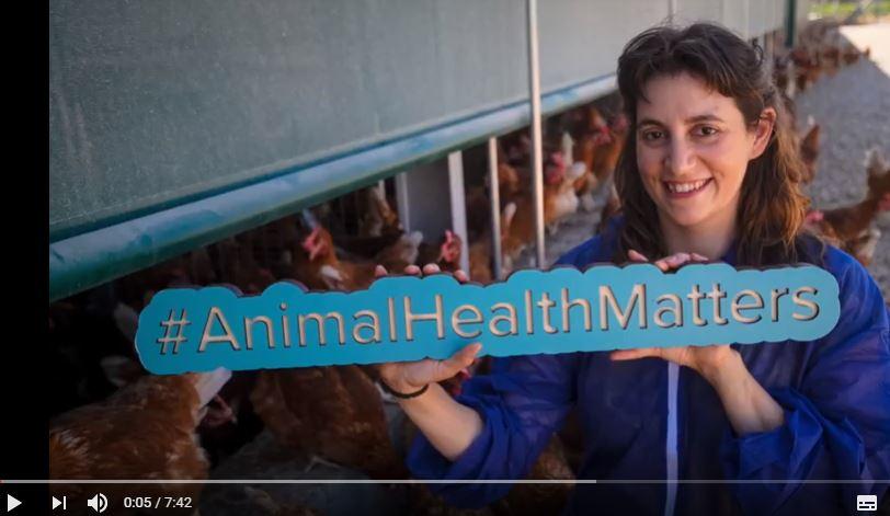 animal-health-matters-granja-agas