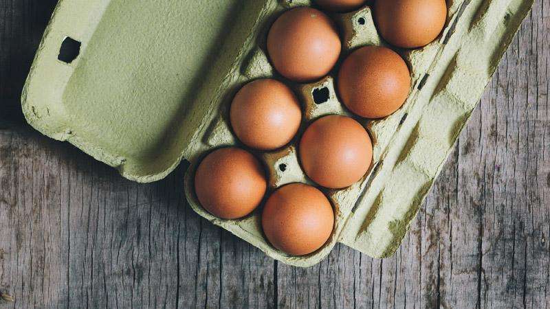 carton-huevos