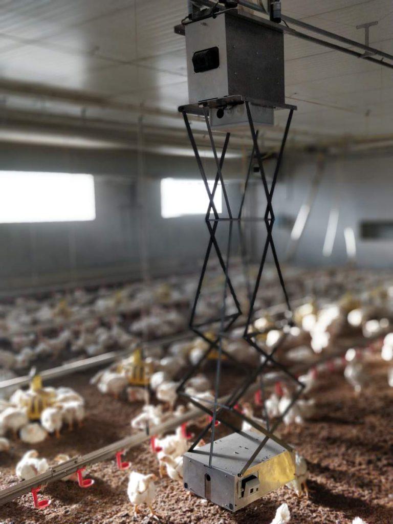 faromatics-chickenboy-robot-pollos-vertical