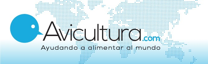 Avicultura